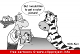 Zebra in photo shop cartoon image for free